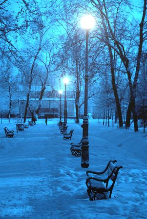 Park alley in winter at dusk Stock Photo