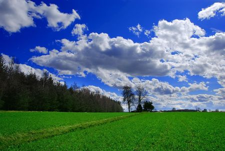 Beautiful spring landscape Stock Photo - 855152