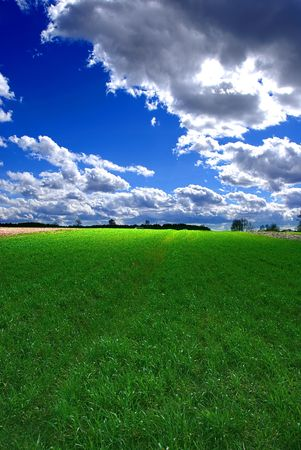 Beautiful summer landscape Stock Photo - 867861