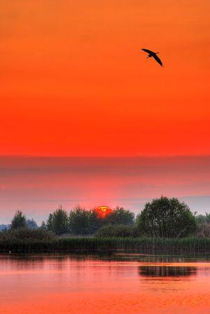 Summer sunset on a foggy lake photo