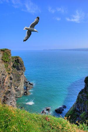 Rocky shore in Port Isaak, Cornwall, UK Stock Photo - 1006748