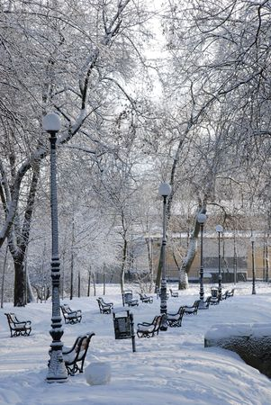 Park alley in winter with a row of red benches photo