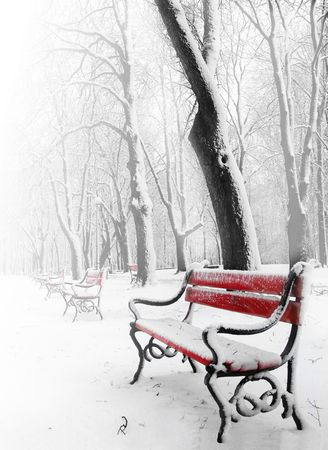 Red benches in the fog in winter photo