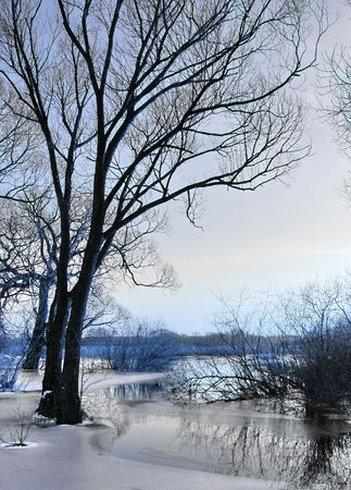 snowlandscape: Winter by the river
