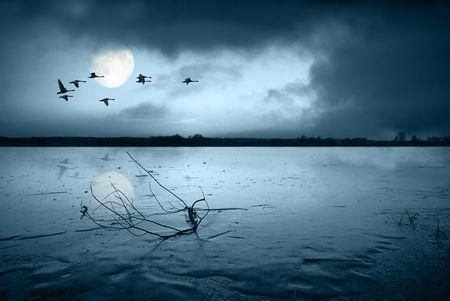 frozen lake: Bevroren meer in het maan licht