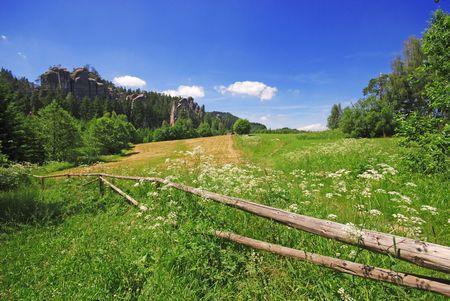 Beautiful summer field in Anderspach, Czech Republic Stock Photo - 3228405