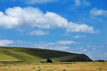 Beautiful summer landscape Stock Photo - 4193092