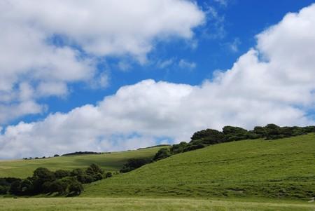 Beautiful summer landscape Stock Photo - 4193093