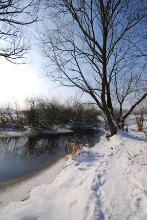 Winter by the river photo