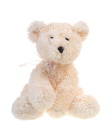 playthings: Fluffy teddy bear isolated on white background