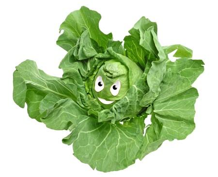 Happy food series - cabbage Zdjęcie Seryjne