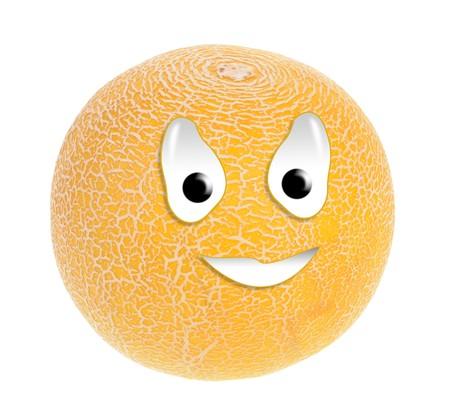 Happy food series - melon photo