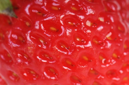 Strawberry texture in closeup  photo