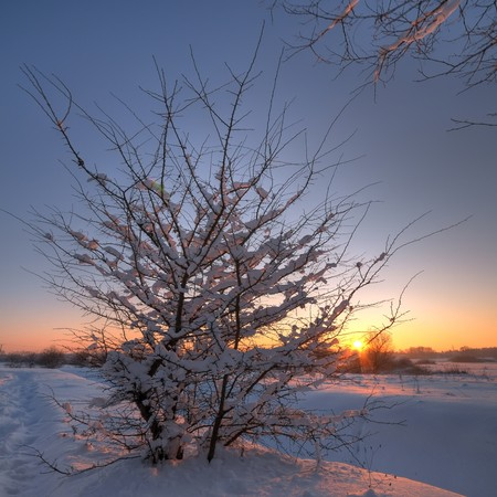 Beautiful winter sunset Stock Photo - 7667700