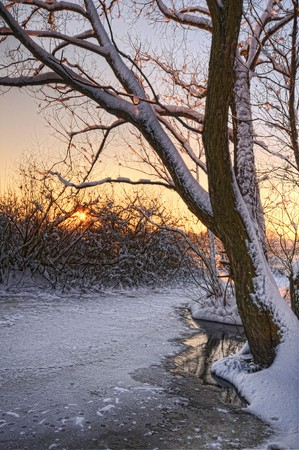 Beautiful winter sunset Stock Photo - 7667832