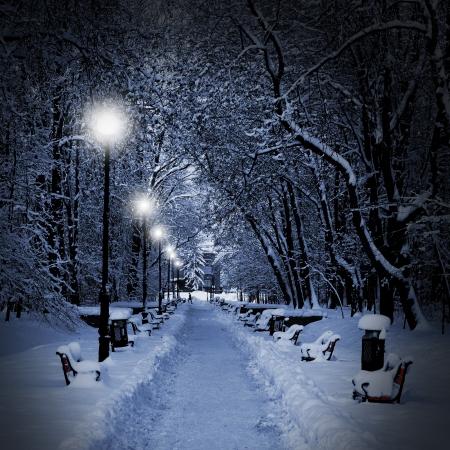 nuit hiver: Winter park dans la soir�e, recouvert de neige Banque d'images