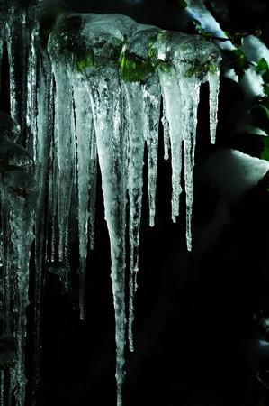 sopel lodu: Jej na czarnym tle  Zdjęcie Seryjne