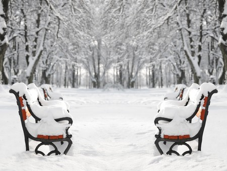 snowlandscape: Winter park with red benches covered with snow
