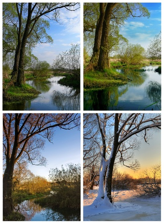 blossom time: A tree by the river at four different seasons - spring summer autumn and winter Stock Photo