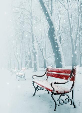 snowy background: Fila de bancos rojos en el parque en la nieve en invierno