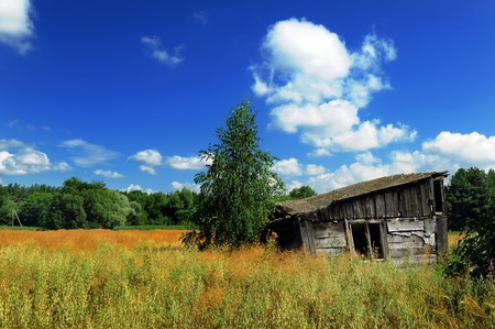 Old wooden shed in the field in summer Stock Photo - 8897054