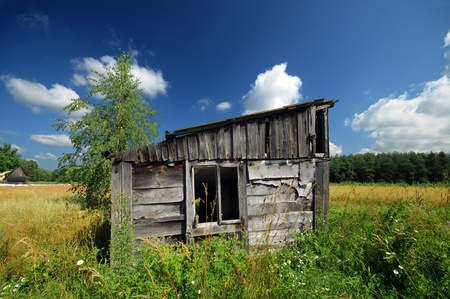 shed: Old wooden shed in the field in summer Stock Photo