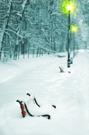 Winter park in the evening covered with snow with a row of lamps  Stock Photo - 10769486