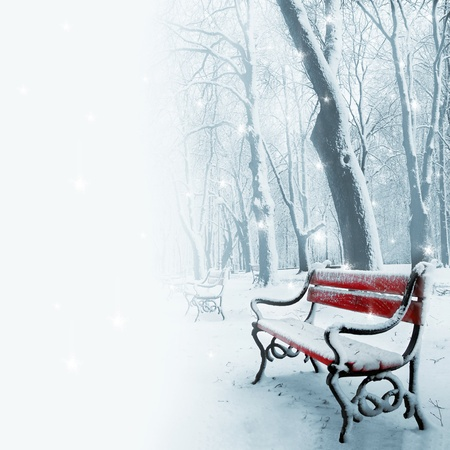 Row of red benches in the park in the snow in winter photo