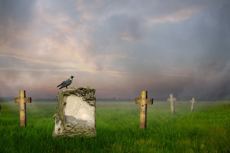 Crow sitting on a gravestone at sunrise