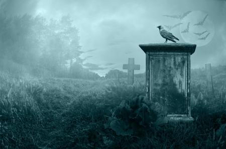 Wrona siedzi na nagrobku w świetle księżyca