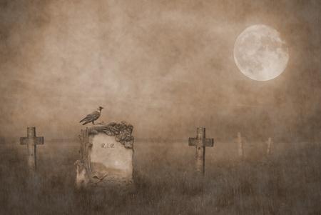 cementerios: cuervo sentado en una l�pida en la luz de la luna Foto de archivo