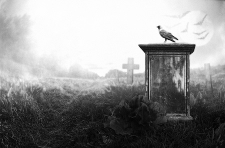 spooky graveyard: crow sitting on a gravestone in moonlight Stock Photo