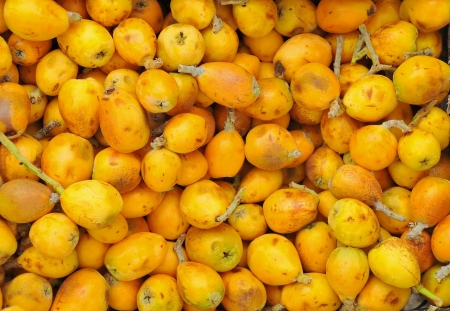 Pile of Tunisian marula fruit