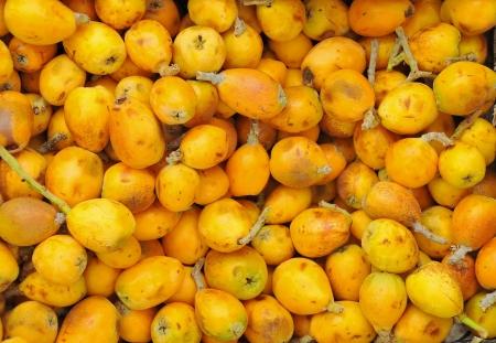 tunisian: Pile of Tunisian marula fruit