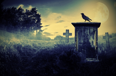 Crow zittend op een grafzerk in maanlicht Stockfoto