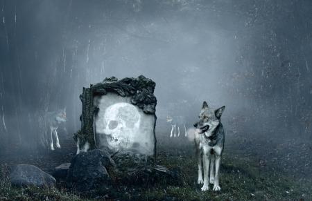 pack animal: Lupi guardia una vecchia tomba in una foresta oscura Archivio Fotografico