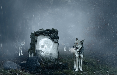 Wolves guarding an old grave in a dark forest photo