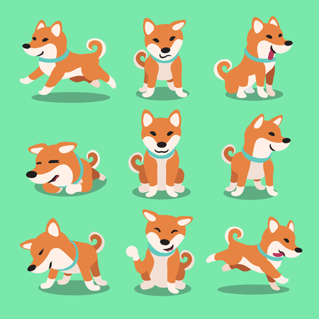 Cartoon character shiba inu dog poses