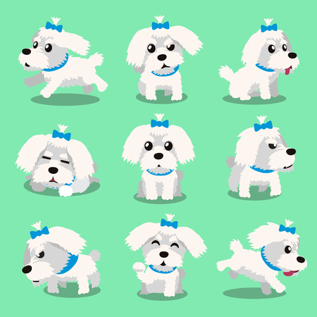 maltese dog: Cartoon character maltese dog poses