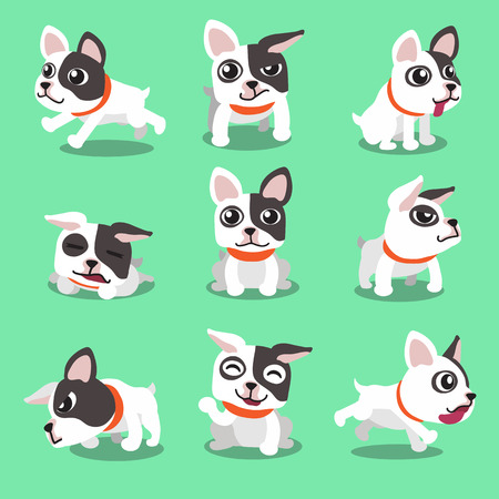 french: Cartoon character french bulldog poses