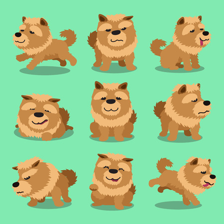 chow: Cartoon character chow chow dog poses