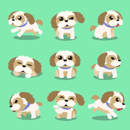 Stripfiguur shih tzu dog poses Stock Illustratie