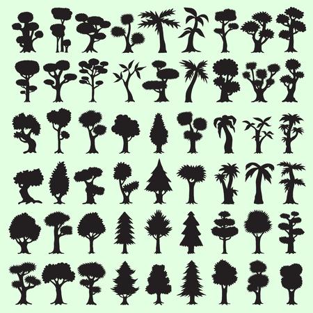 arbol de pino: 54 �rboles negros Colecci�n de las siluetas