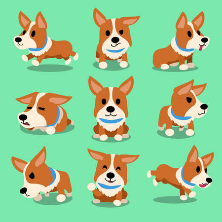Cartoon character corgi dog poses