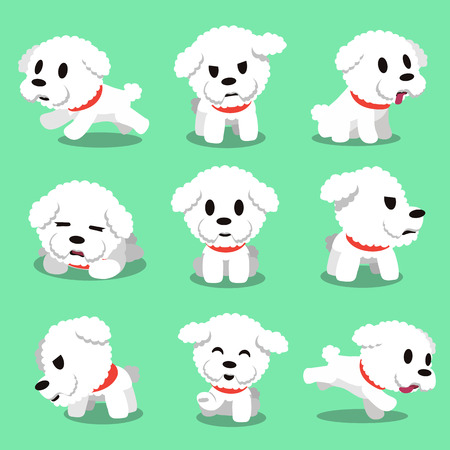 Cartoon character bichon frise dog poses