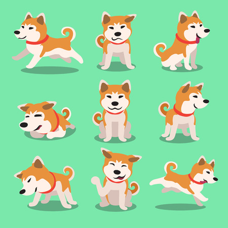 Cartoon character akita inu dog poses