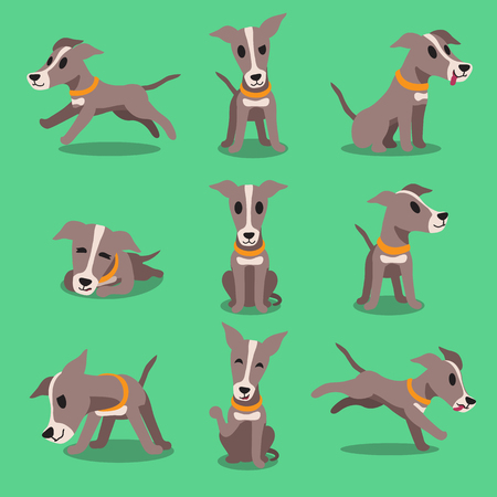 purebred dog: Cartoon character greyhound dog poses