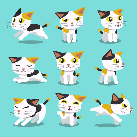 Set of Cartoon character cat poses