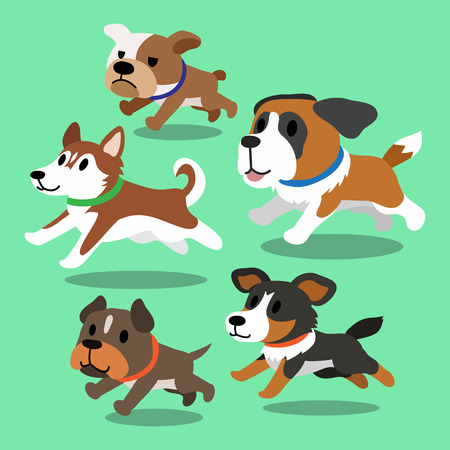 black and white pit bull: Cartoon dogs running Illustration