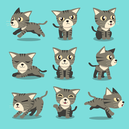 kitten cartoon: Cartoon character grey tabby cat poses